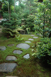 I giardini giapponesi il mio te blog for Giardini giapponesi