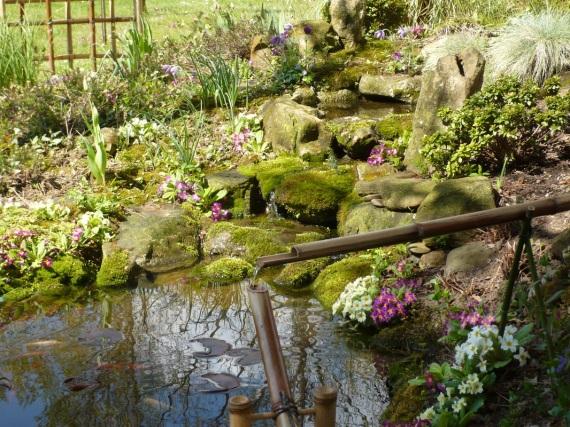 Il mio te blog viaggio nel mio mondo del t - Giardino del te ...