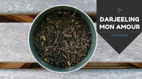 darjeeling tea indiano